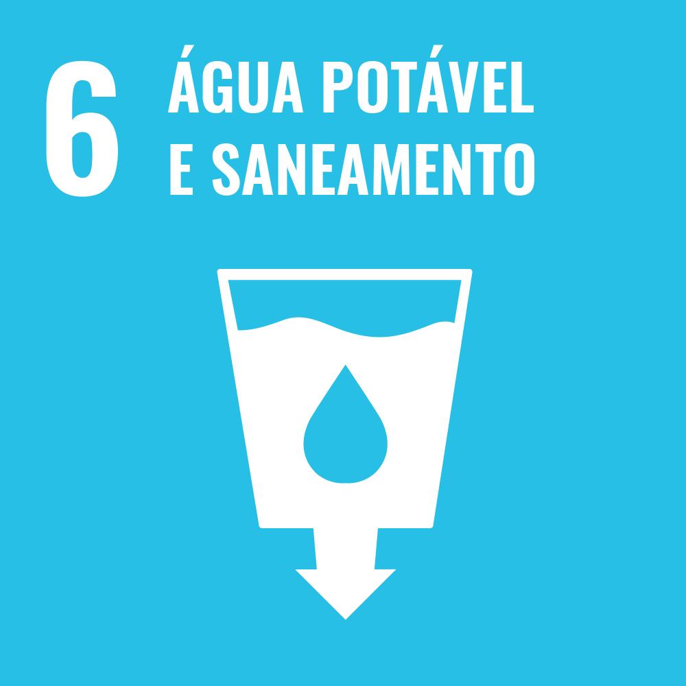 Sexto Objetivo de Desenvolvimento Sustentável, 17ODS, ONU