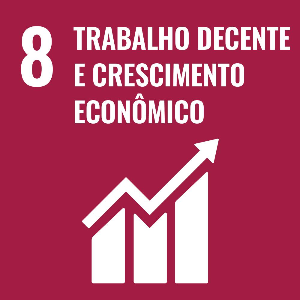 ODS8, oitavo dos Objetivos de Desenvolvimento Sustentável, 17ODS